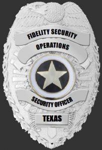 Texas Badge